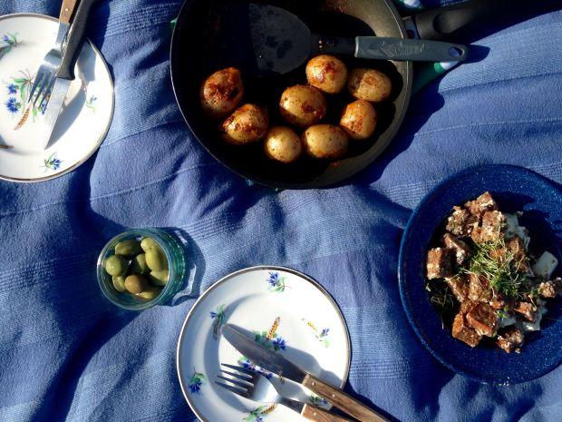 goerlitz_picknick-an-der-neisse